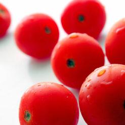 Obst - Gemüse